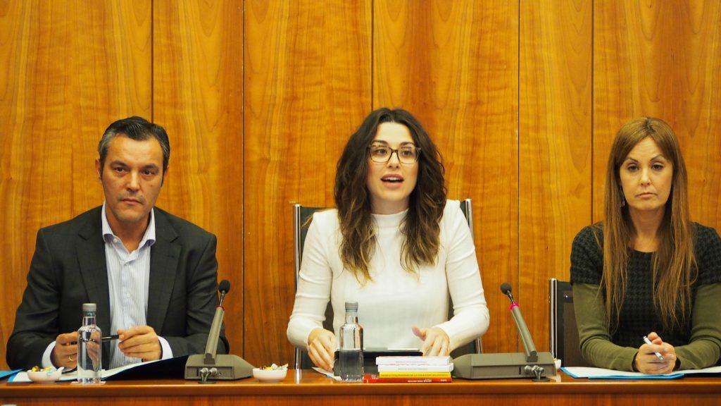 Aitana Mas, presidenta de la comissió especial de Les Corts sobre la DANA a la Vega Baja