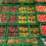 Mercadona preveu comprar més de 7.000 tones de raïm de la comarca del Vinalopó enguany